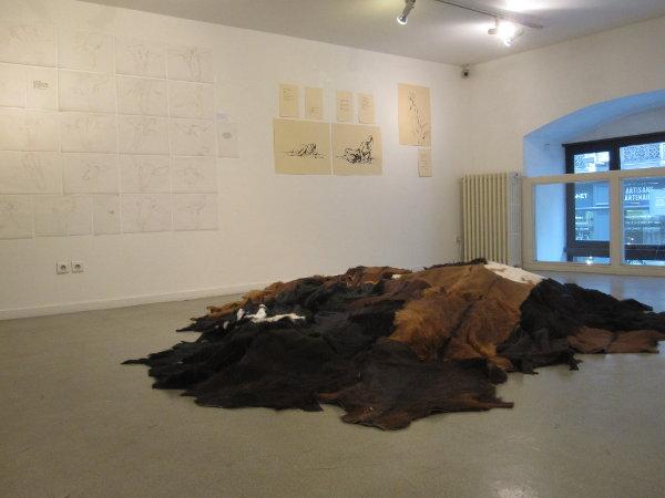 Exposition à la MAPRAA à Lyon (69)